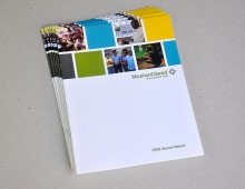 Mustard Seed Annual Report